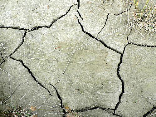 cracks-in-dry-mud-2